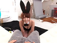Sexy bunny in fishnet stockings wants a dick not a carrot. JAV.