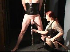 Playful Mistress CBT femdom porn